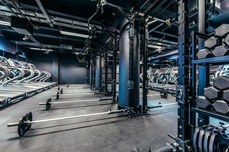 Sweat It Gym Rig